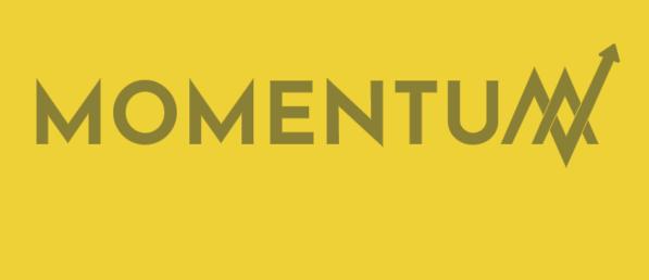 momentum 4-03